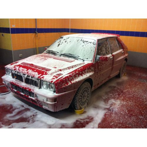 Lavaggio di mantenimento vettura con protezione nano o cera
